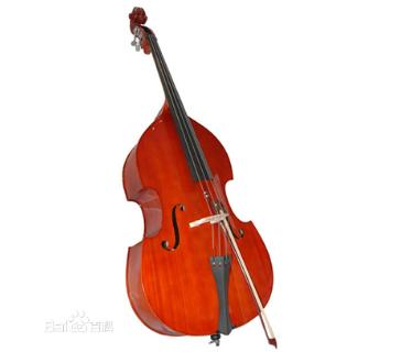 低音提琴介绍
