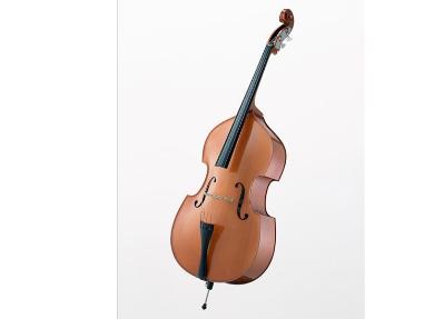 低音提琴的定弦方法